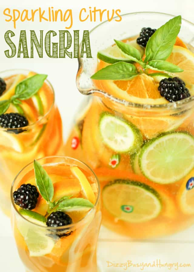 Easy Summer Sangria Recipes - refreshing sparkling citrus sangria is perfect for summer afternoons and evenings.  Click to get this easy sangria recipe that is a wonderful drink choice for a crowd.