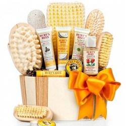 Burt's Bee Spa Gift Basket - Under $50